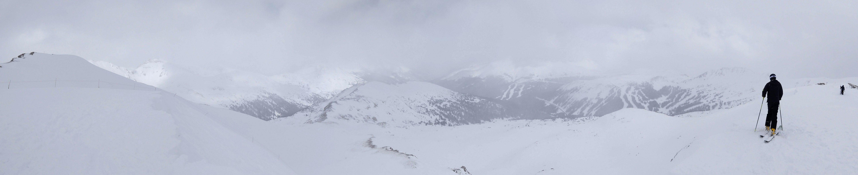 Marmot Panorama