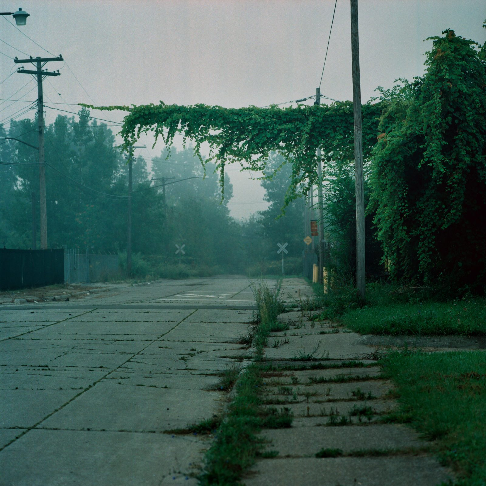Foggy dead end. Detroit, Michigan.