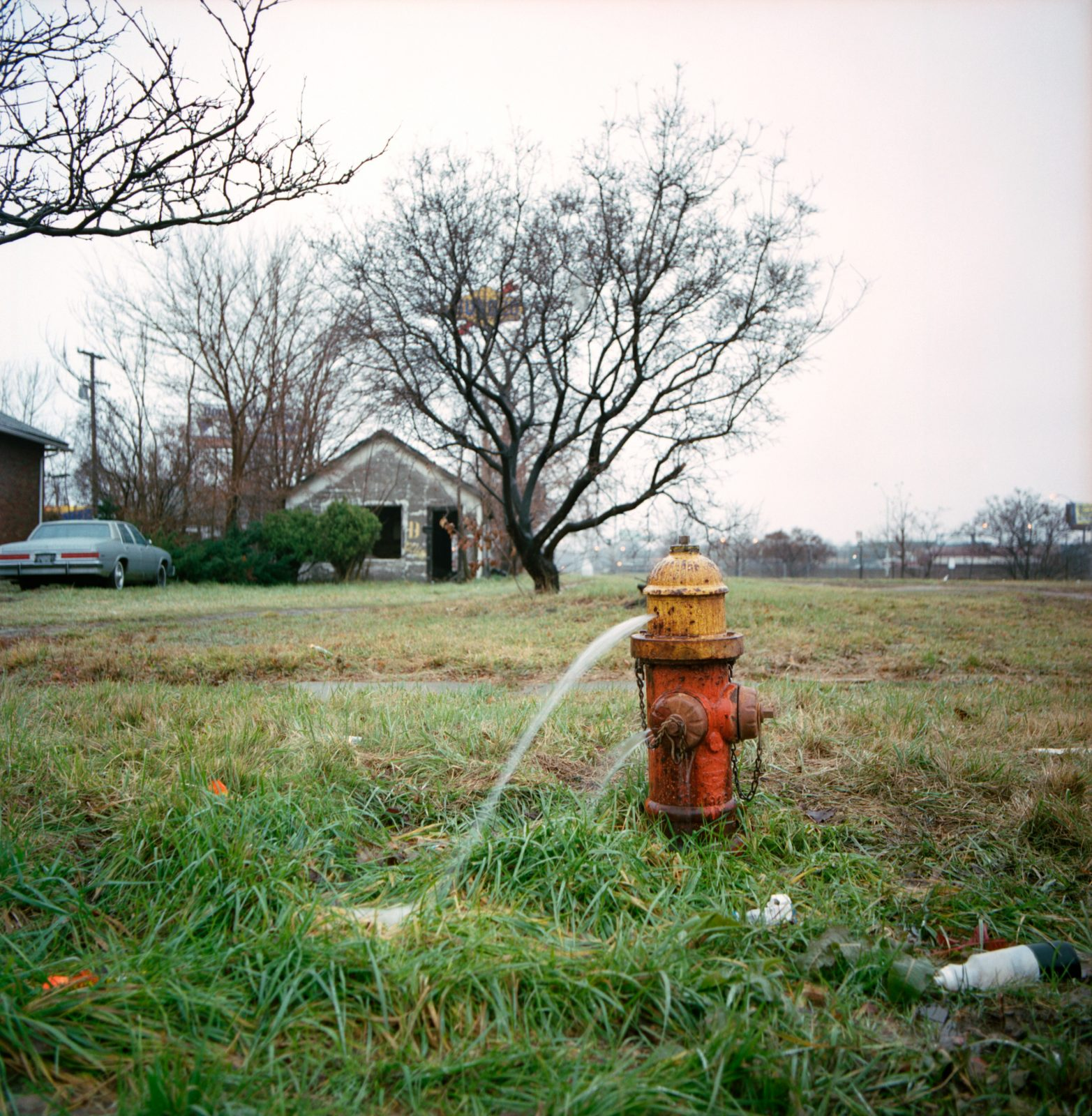 Leaky fire hydrant. Detroit, Michigan.