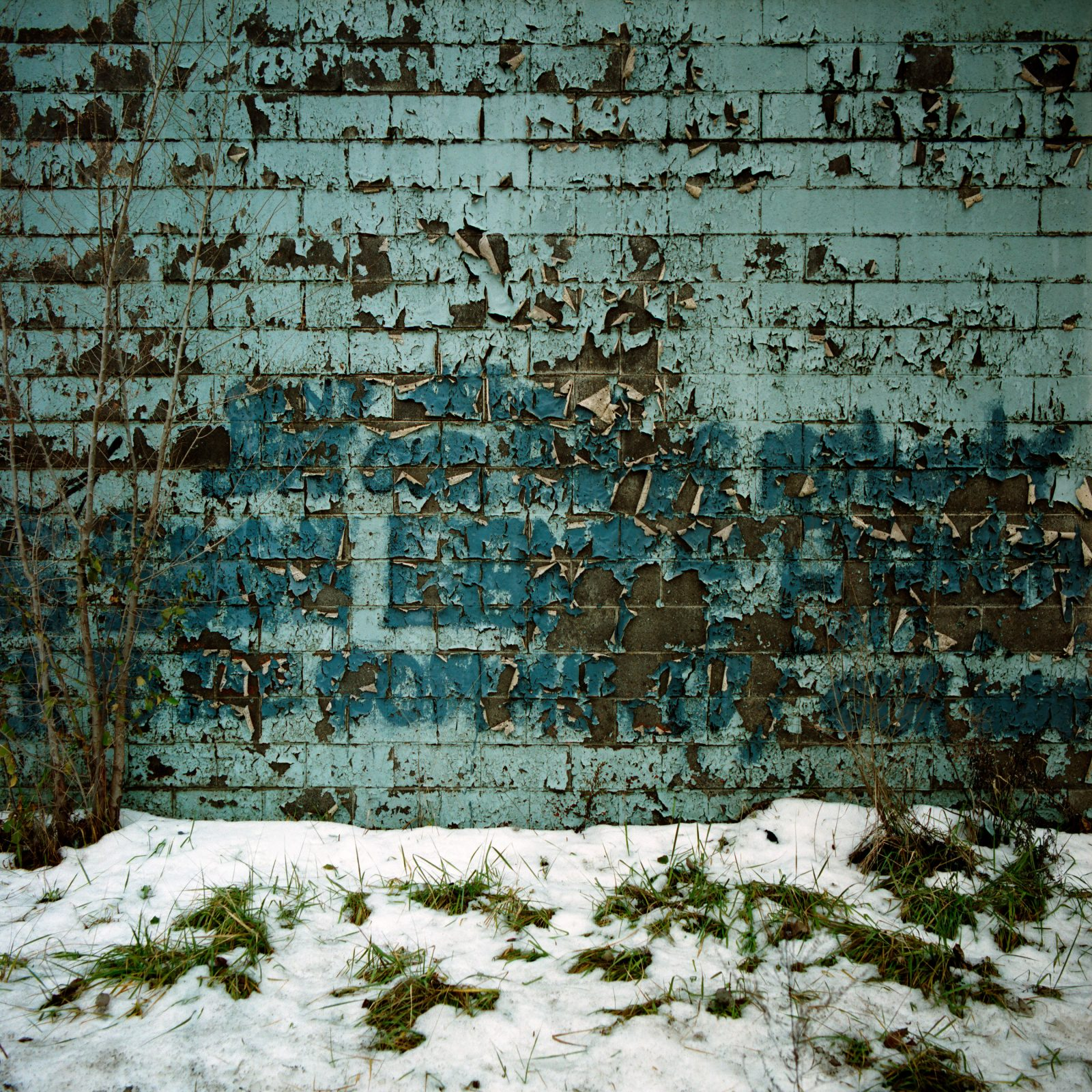 Peeling paint on a wall. Detroit, Michigan.