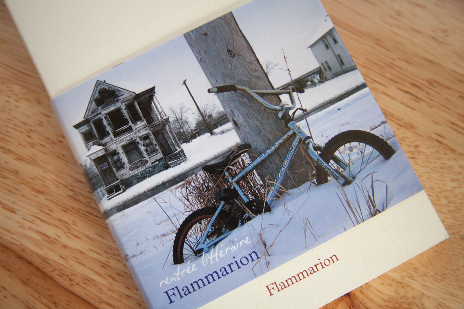 Calmann Levy book cover