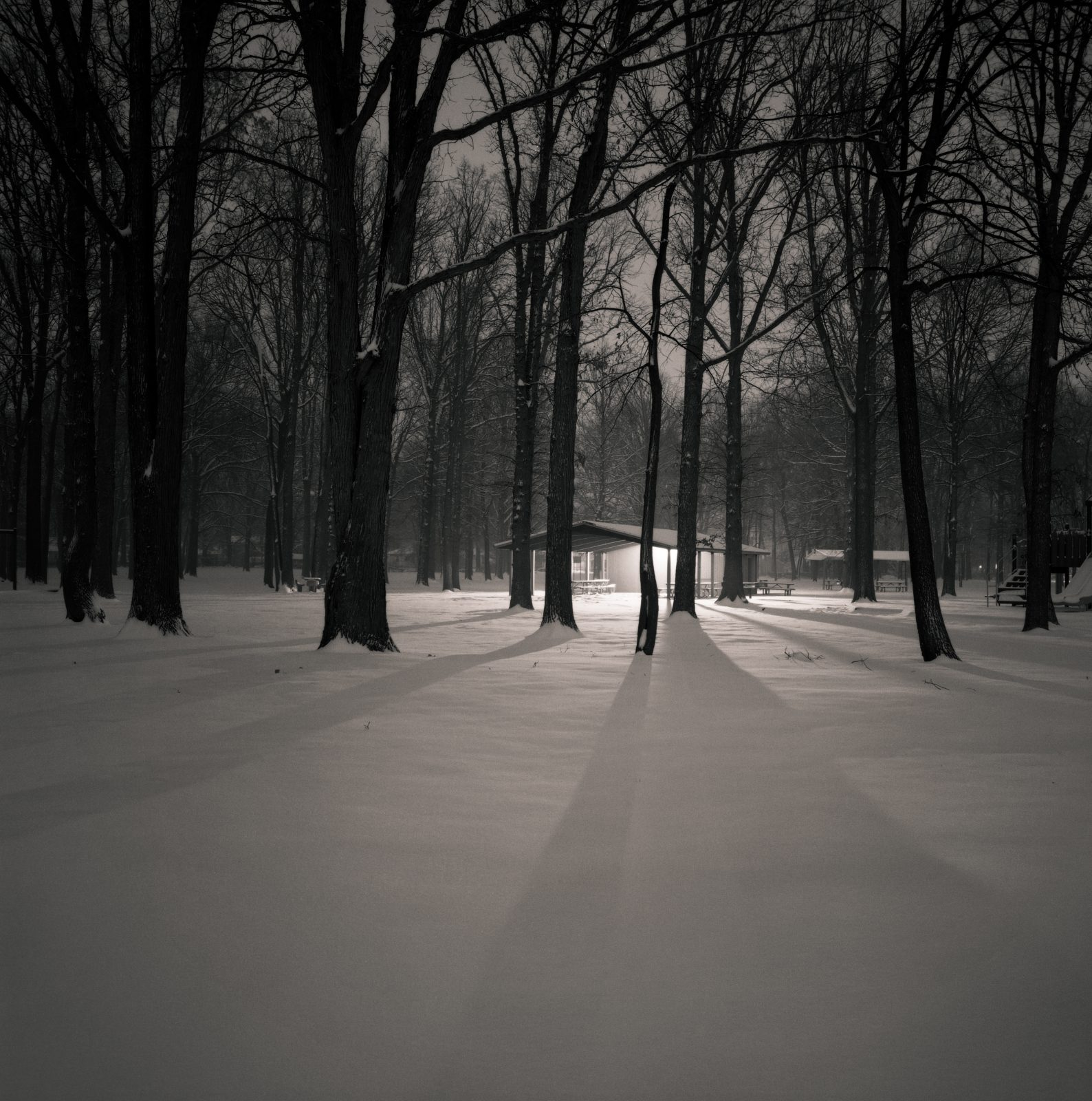 Black and white photo of a park at night