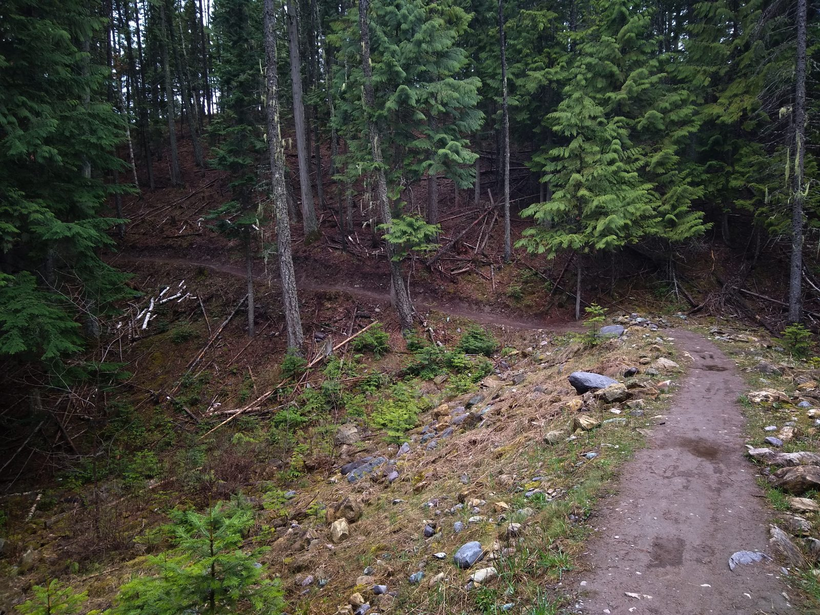 Whitefish Trail - May 7, 2020