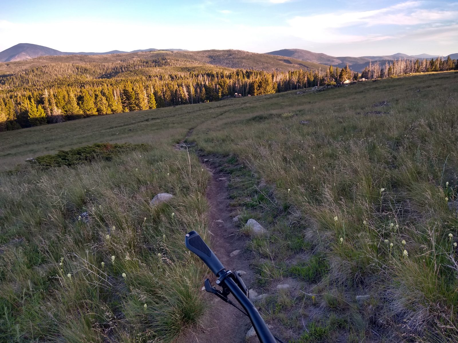 Continental Divide Trail - June 26, 2020