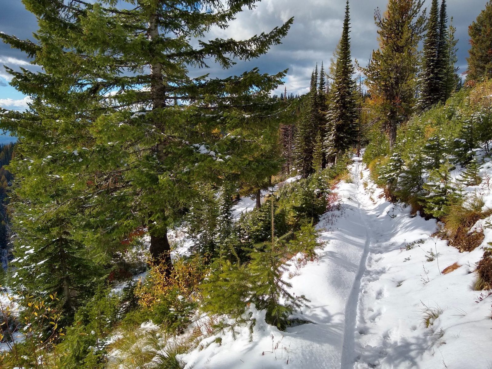Snowy singletrack on Big Mountain